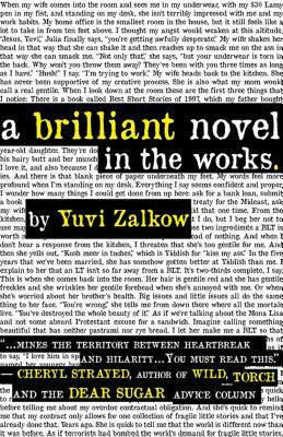 A Brilliant Novel in the Works - Zalkow, Yuvi