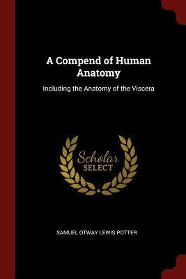 A Compend of Human Anatomy: Including the Anatomy of the Viscera - Potter, Samuel Otway Lewis