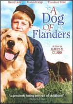 A Dog of Flanders - James B. Clark