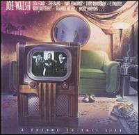 A Future to This Life - Joe Walsh