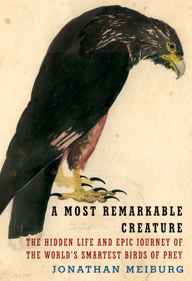 A Most Remarkable Creature: The Hidden Life and Epic Journey of the World's Smartest Birds of Prey - Meiburg, Jonathan