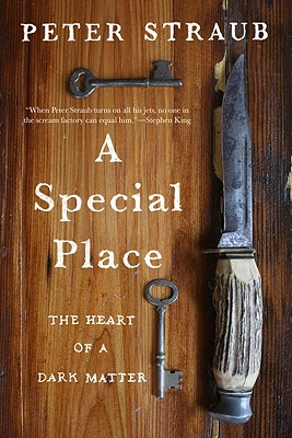 A Special Place: The Heart of a Dark Matter - Straub, Peter