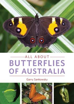 All About Butterflies of Australia - Sankowsky, Garry