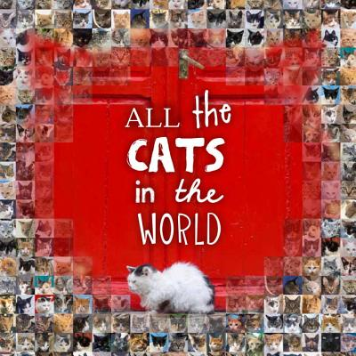 All the Cats in the World - Hunter, Jesse