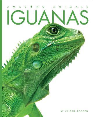 Amazing Animals: Iguanas - Bodden, Valerie