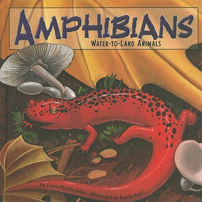 Amphibians: Water-To-Land Animals - Salas, Laura Purdie