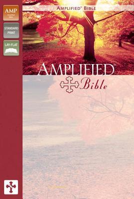 Amplified Bible-AM - Zondervan Publishing