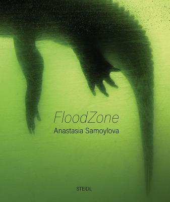 Anastasia Samoylova: Floodzone - Samoylova, Anastasia (Photographer), and Campany, David (Text by)