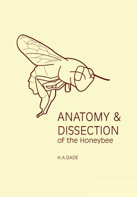 Anatomy and Dissection of the Honeybee - Dade, H a