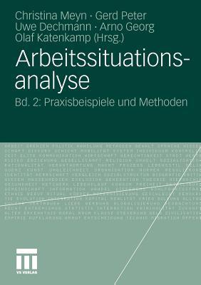 Arbeitssituationsanalyse: Bd. 2: Praxisbeispiele Und Methoden - Meyn, Christina (Editor)