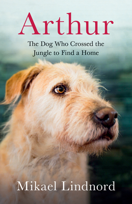 Arthur: The Dog Who Crossed the Jungle to Find a Home - Lindnord, Mikael