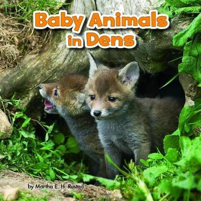 Baby Animals in Dens - Rustad, Martha E. H.