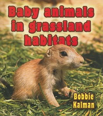 Baby Animals in Grassland Habitats - Kalman, Bobbie