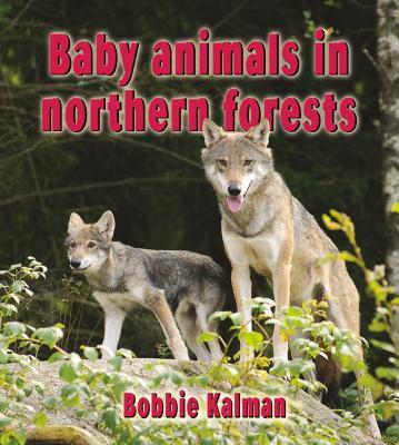 Baby Animals in Northern Forests - Kalman, Bobbie
