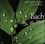 Bach in the Rain