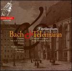Bach: Non sa che dolore; Triple Concerto; Telemann: Concerto in A major
