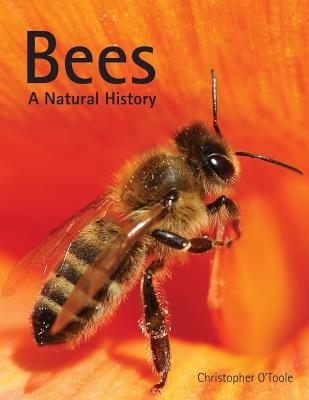 Bees: A Natural History - O'Toole, Christopher