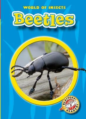Beetles - Sexton, Colleen