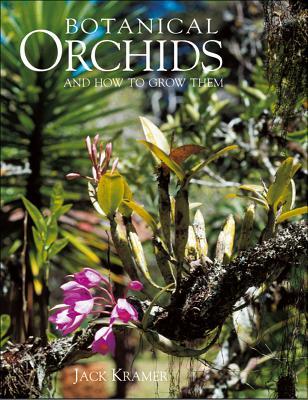 Botanical Orchids - Kramer, Jack
