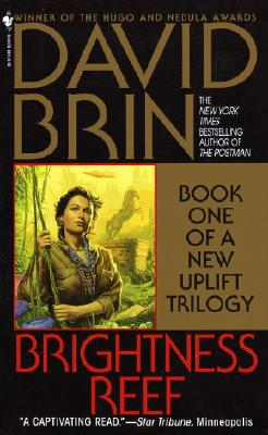 Brightness Reef - Brin, David