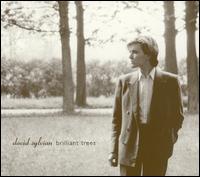 Brilliant Trees - David Sylvian