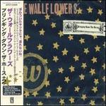 Bringing Down the Horse [Japan Bonus Tracks]