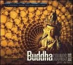 Buddha Sounds, Vol. 3: Chill in Tibet