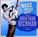 Buzz Buzz Buzz: An Introspective