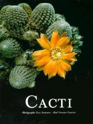 Cacti - Cerutti, Vincent