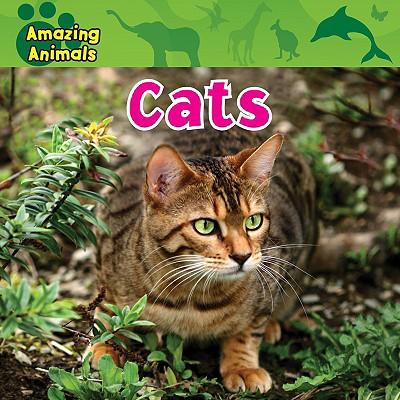 Cats - Wilsdon, Christina