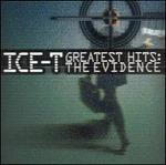Greatest Hits: The Evidence [Atomic Pop]