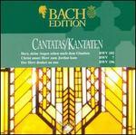 Bach: Cantatas BWV 102, 7 & 196