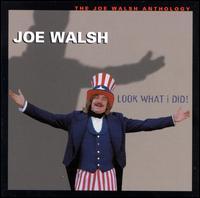 Look What I Did!: The Joe Walsh Anthology - Joe Walsh