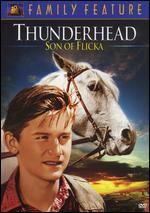 Thunderhead-Son of Flicka
