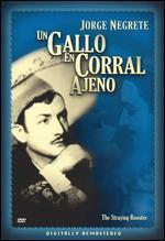 Un Gallo en Corral Ajeno