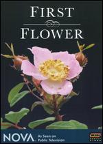 NOVA: First Flower -