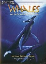 Whales: An Unforgettable Journey