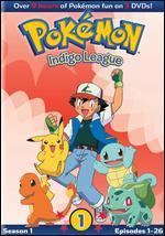 Pokemon-the Great Race (Vol. 11) [Vhs]
