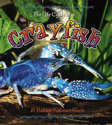 Crayfish - Kalman, Bobbie, and Sjonger, Rebecca