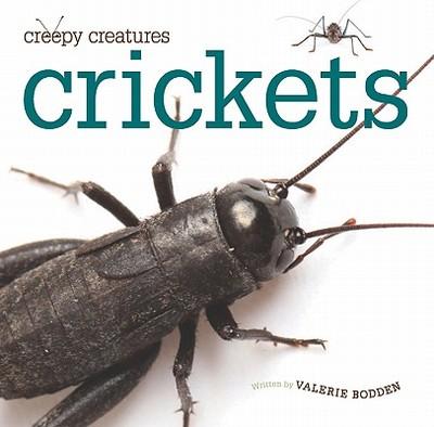 Crickets - Bodden, Valerie