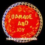 Damage and Joy [LP]