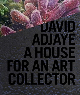 David Adjaye: A House for an Art Collector - Adjaye, David (Text by), and Lindemann, Adam (Text by), and Allison, Peter (Text by)