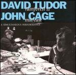 "David Tudor's ""Rainforest II"" and John Cage's ""Mureau"": A Simultaneous Performance"
