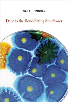 Debt to the Bone-Eating Snotflower - Lindsay, Sarah