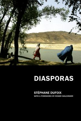 Diasporas - Dufoix, Stephane, and Rodamor, William (Translated by), and Waldinger, Roger (Foreword by)