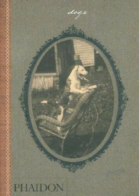 Dogs - Johnson, Catherine