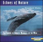 Echoes of Nature: Humpback Whales
