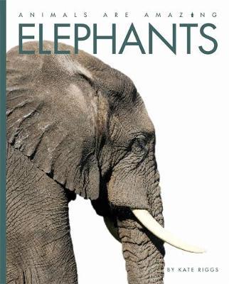 Elephants - Riggs, Kate