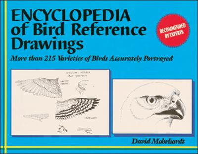 Encyclopedia of Bird Reference Drawings: More Than 215 Varieties of Birds Accurately Portrayed - Mohrhardt, David, and Morhardt, David