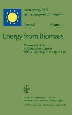 Energy from Biomass: Proceedings of the EC Contractors Meeting Held in Copenhagen, 23 24 June 1981 - Chartier, P (Editor)